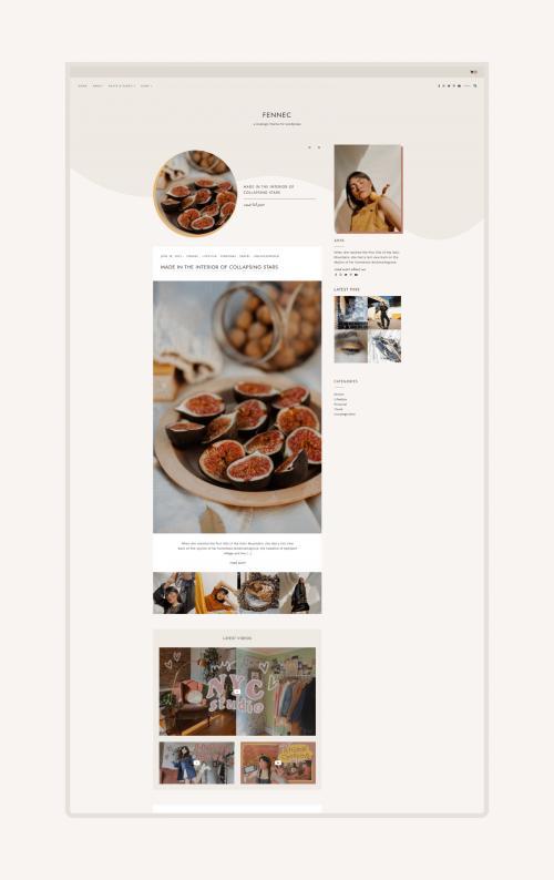 Fennec WordPress theme product image